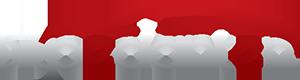 Bilpedanten i Alvesta Logo